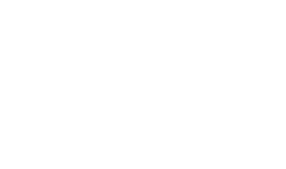 The Tech Dojo Logo